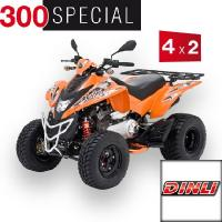 300 Special 4 x 2 Onroad Orange